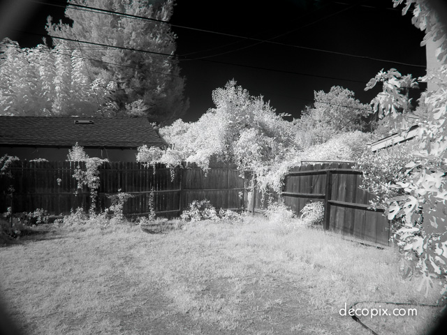 Kodak IR gray bal tweak