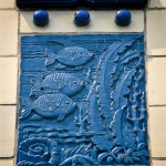 Fish Detail - Chicago, IL