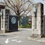 Medical Institute - Tokyo