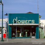 Flower Shop in Emerald Green Carrara glass - Alameda, California